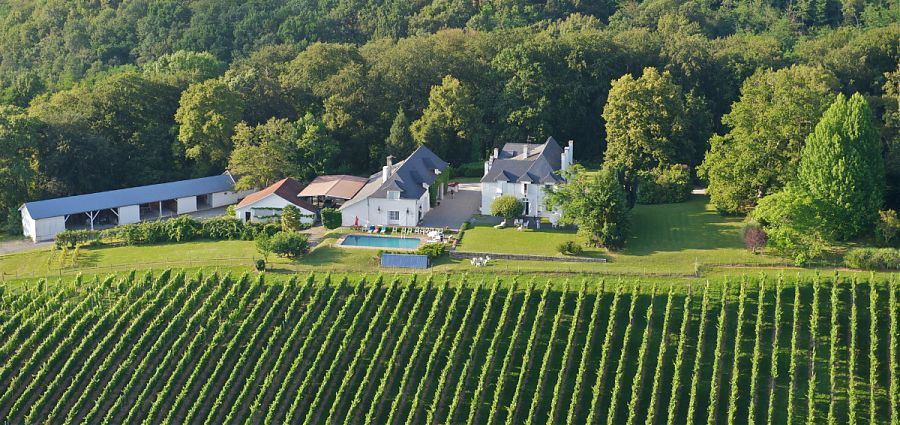 Aerial view of clos mirabel accommodation, pool, vineyards and park.