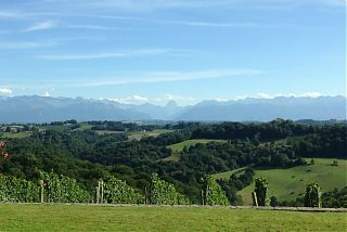 View of the Pyrénées from the terrace