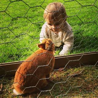 Les enfants adorent notre lapin